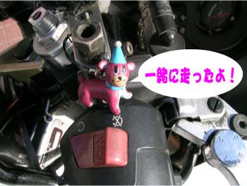 motosalgo10091.jpg